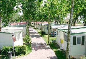 Camping Oasi - Photo 4
