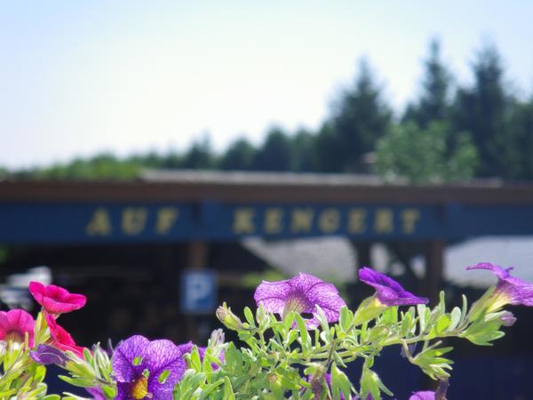 Camping auf Kengert - Photo 3