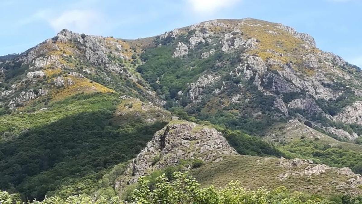 Camping Les Rives de l'Ardèche - Photo 35