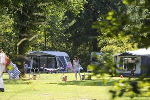 RCN Vakantiepark de Noordster - Photo 4