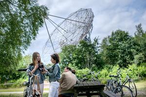 RCN Vakantiepark de Noordster - Photo 30