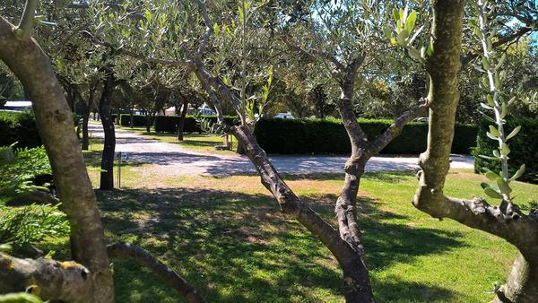 Camping des Favards - Photo 4