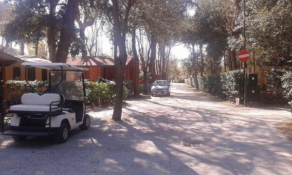 Campeggio Bosco Verde - Photo 4
