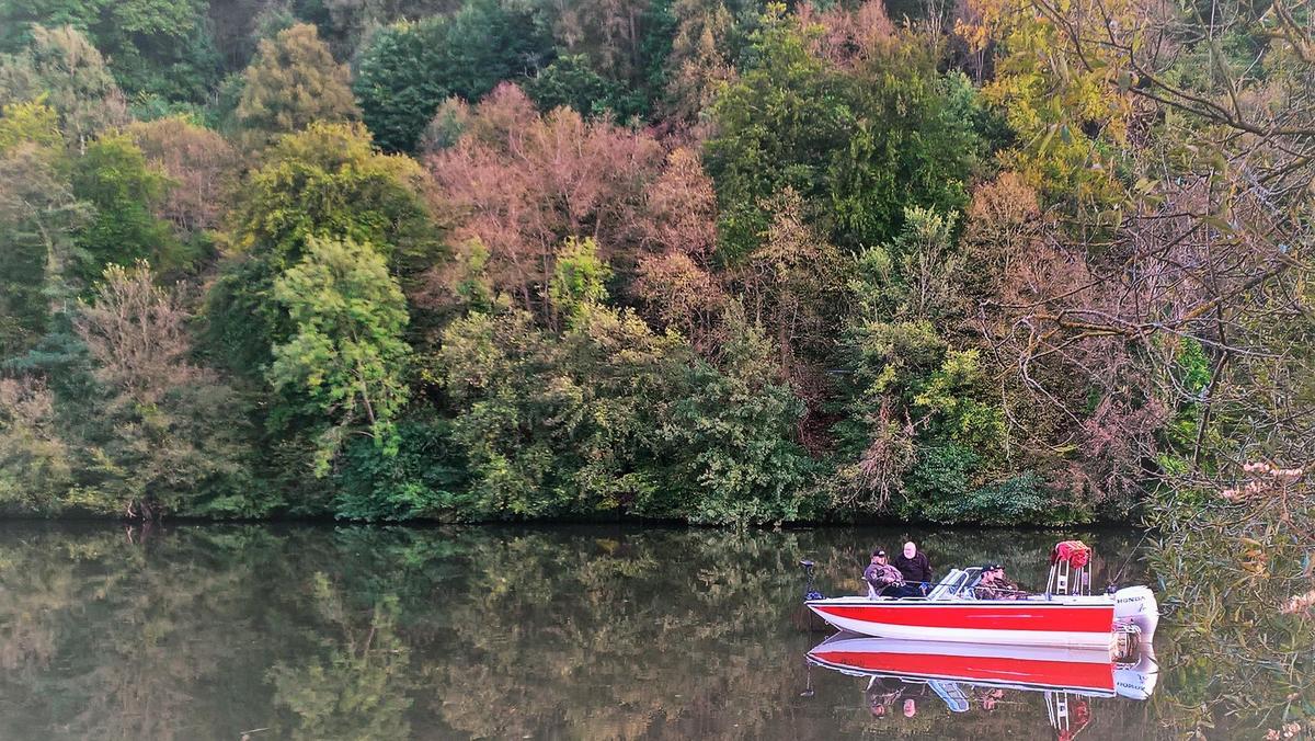 Camping de la Moselle - Photo 34