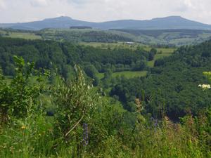 Espace Nature de Sabatoux - Photo 3