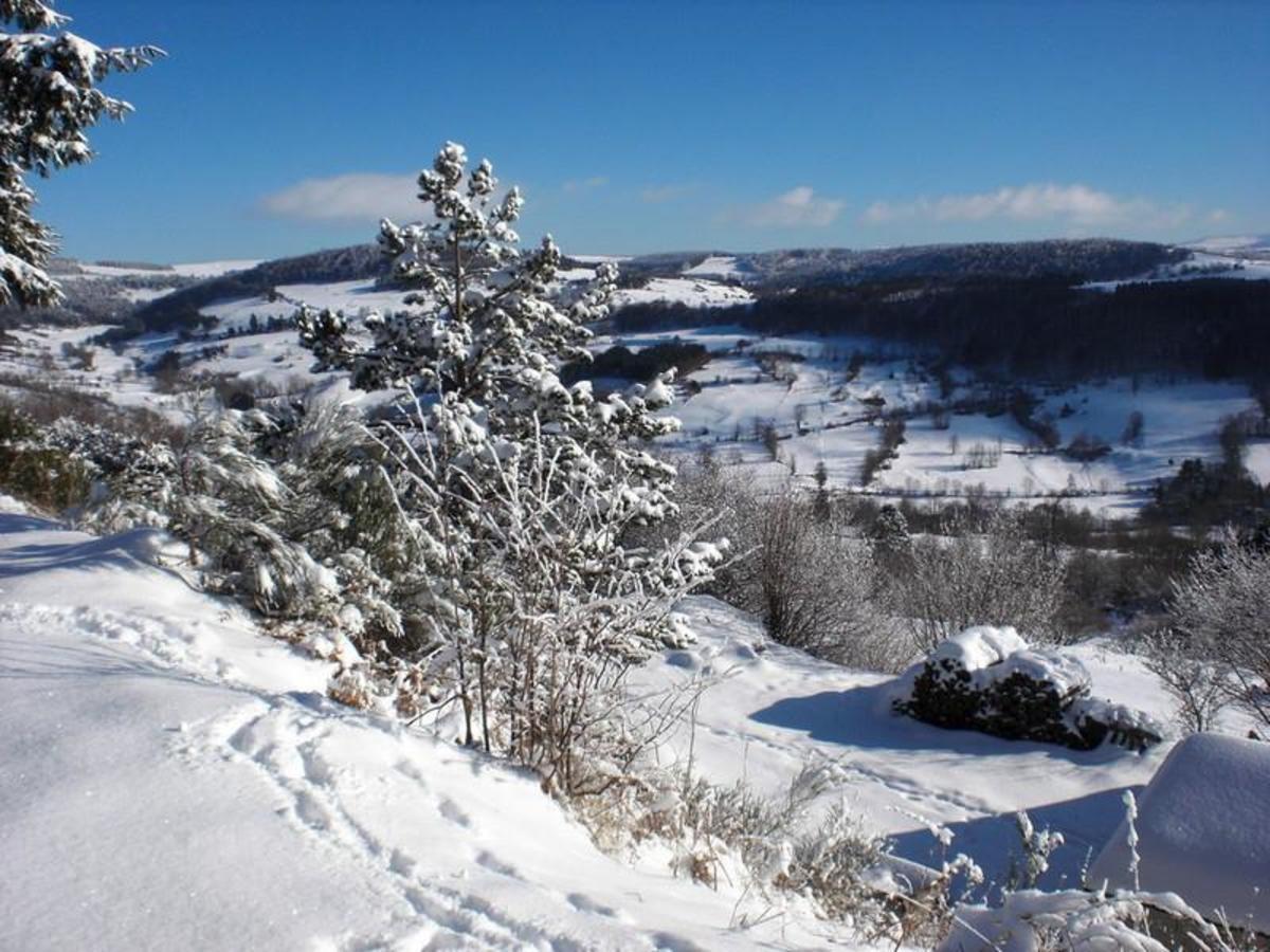 Espace Nature de Sabatoux - Photo 7