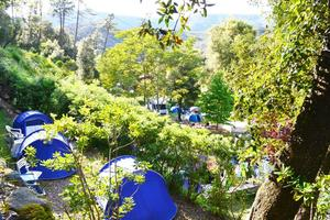 Villaggio Camping Valdeiva - Photo 11