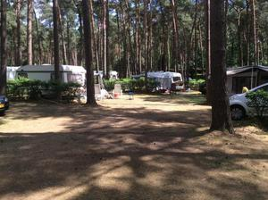 Camping Goolderheide - Photo 7
