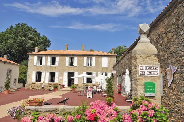 Capfun - Domaine des Forges - Photo 5