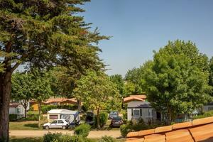 Camping les Alouettes - Photo 5
