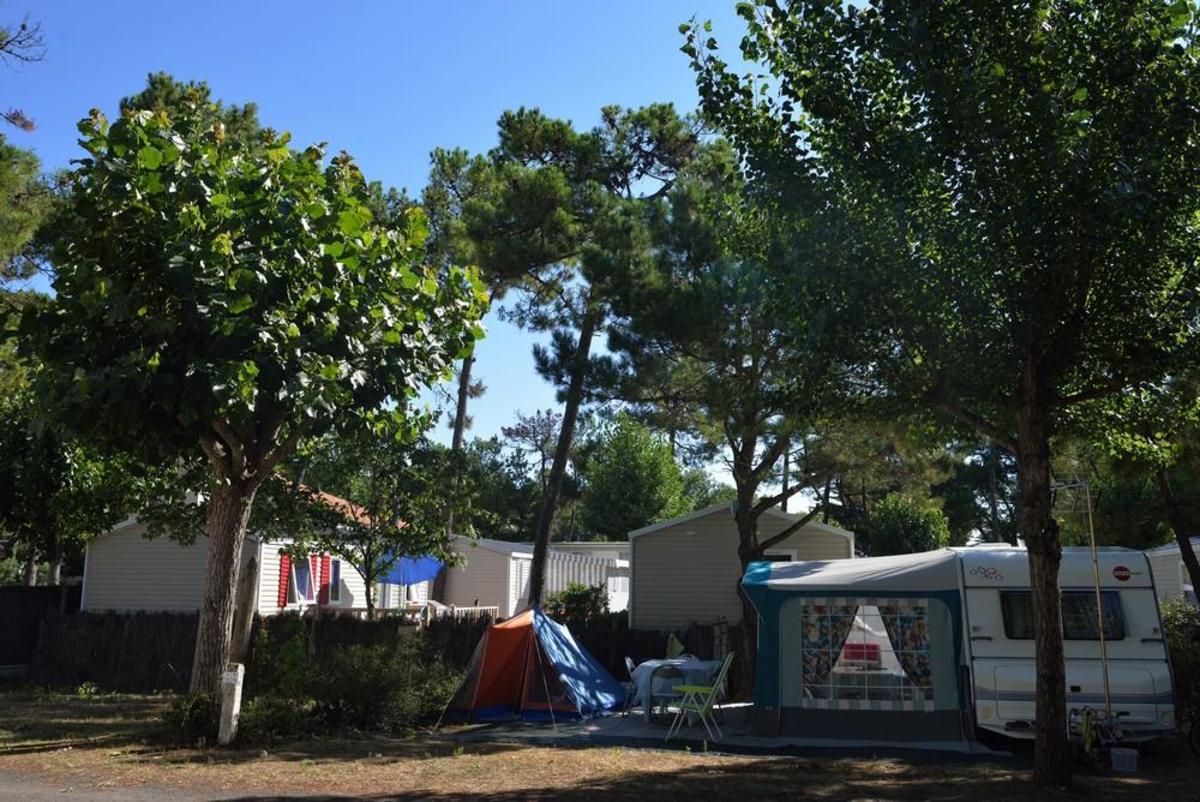 Camping La Conge - Photo 6