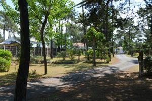 Camping La Conge - Photo 7