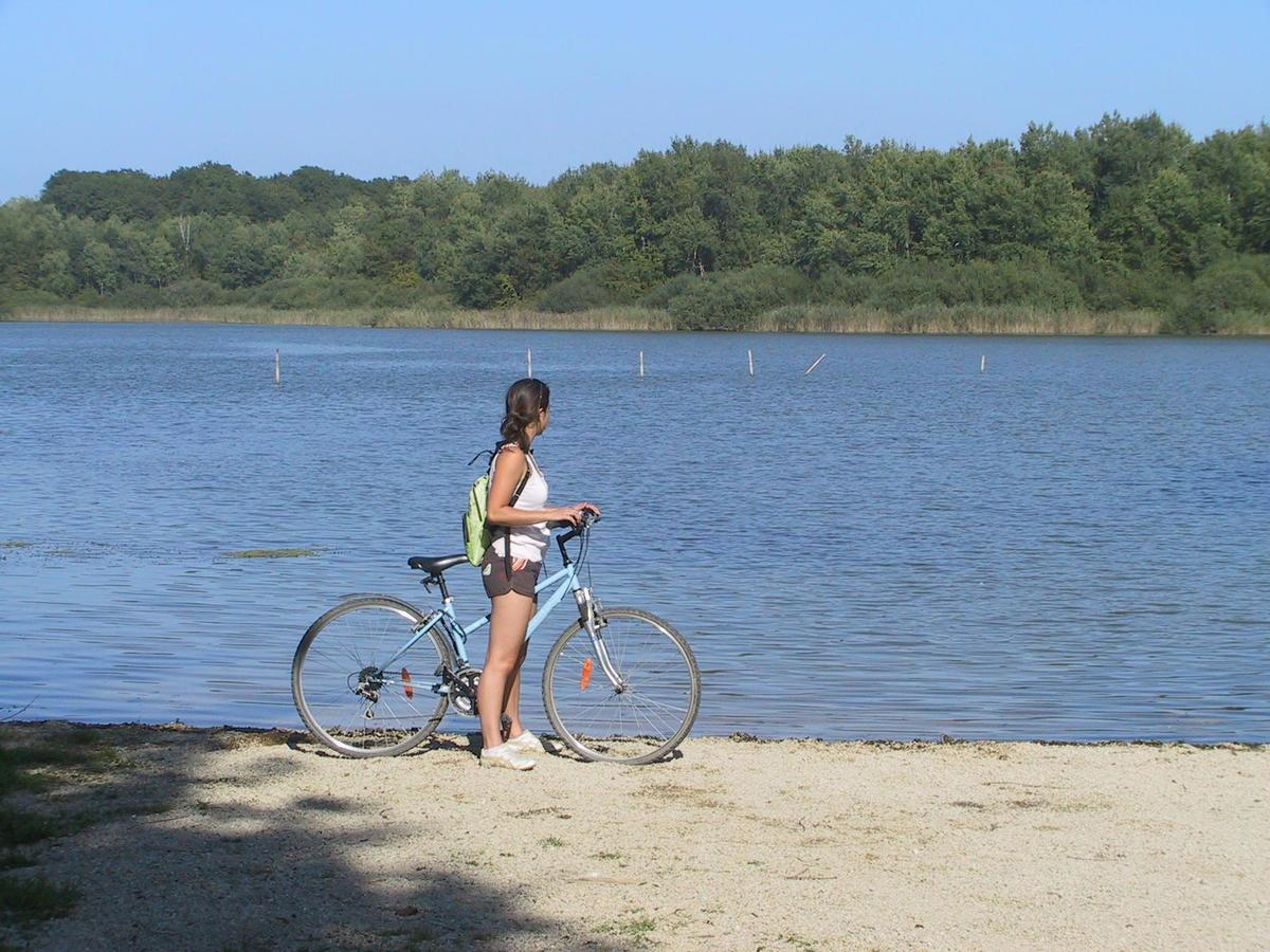 Camping du Buisson - Photo 33