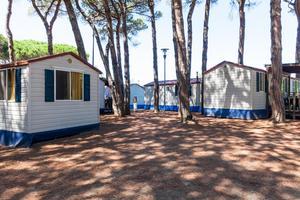 Camping Village Pineta sul Mare - Photo 2