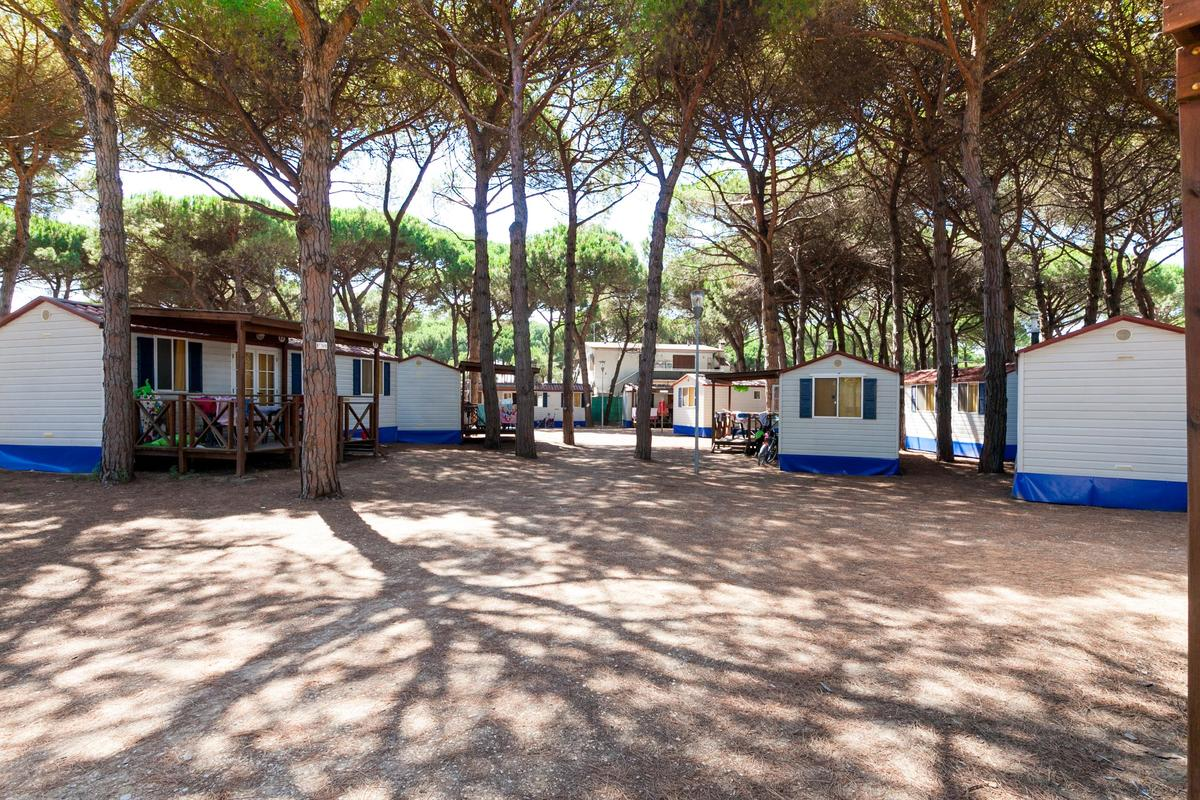 Camping Village Pineta sul Mare - Photo 5
