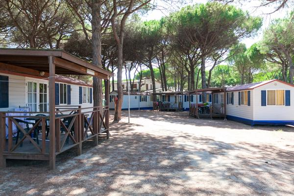 Camping Village Pineta sul Mare - Photo 9