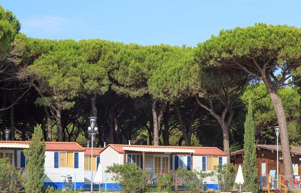 Camping Village Pineta sul Mare - Photo 4