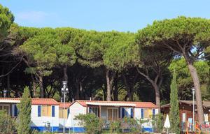Camping Village Pineta sul Mare - Photo 4