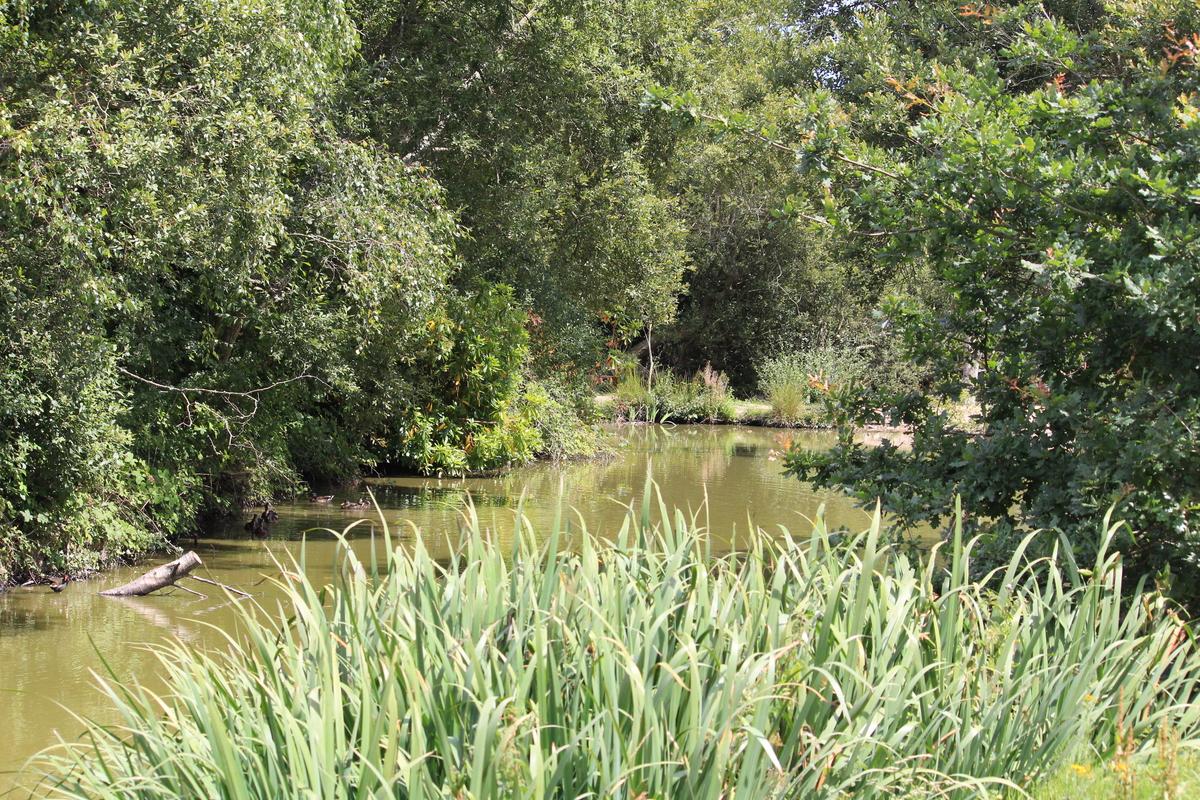 Norden Farm Camp Site - Photo 7