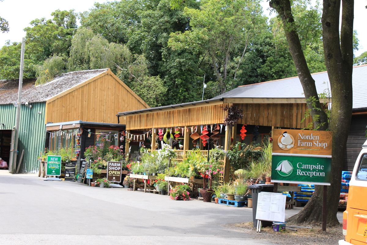 Norden Farm Camp Site - Photo 13
