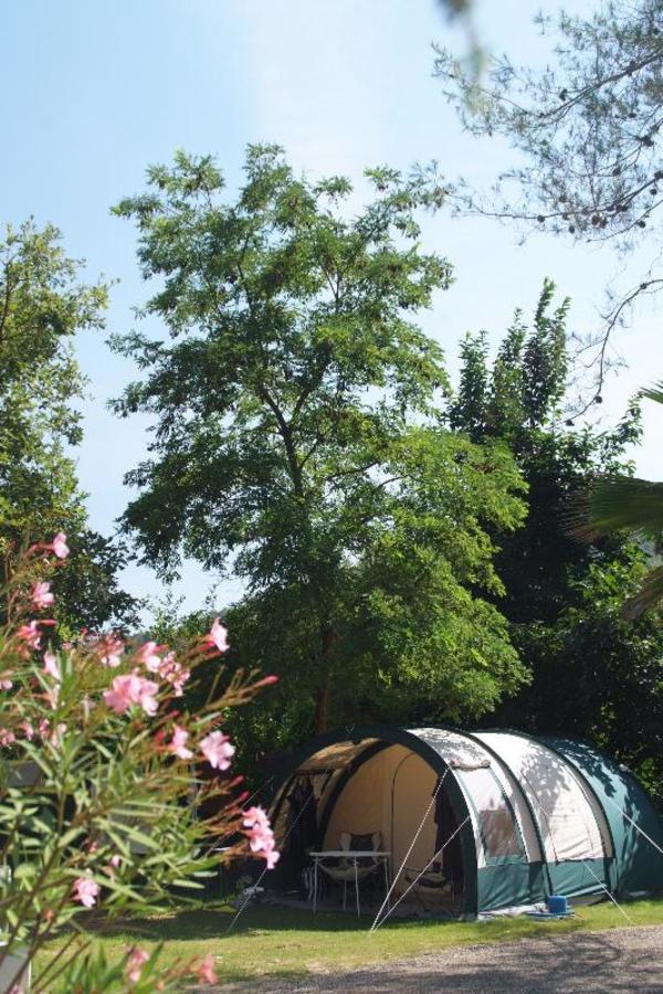 Sites et Paysages Les Pinèdes - Photo 8