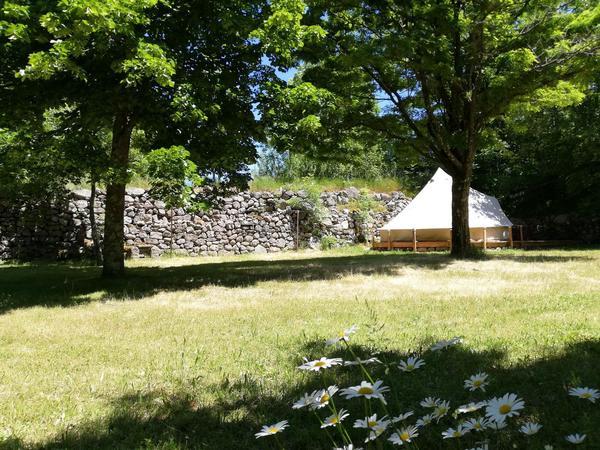 Camping Auprés De Mon Arbre - Photo 3