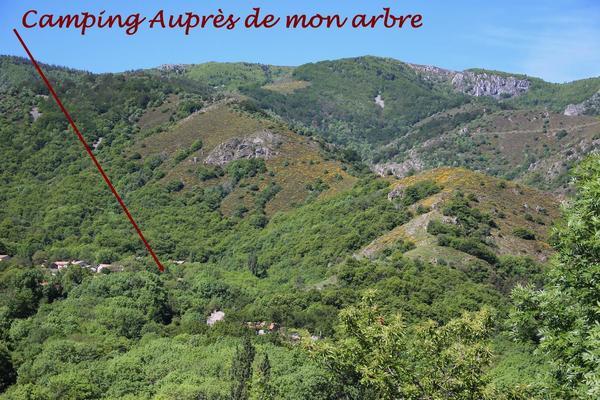 Camping Auprés De Mon Arbre - Photo 6