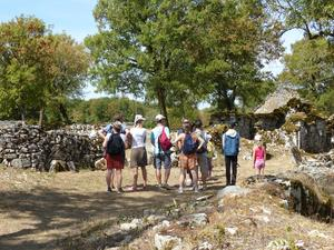 Camping du PIGEONNIER - Photo 36