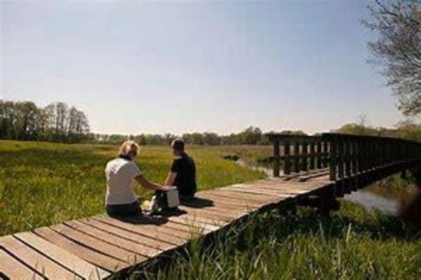 Natuurkampeerterrein Mariahoeve - Photo 10