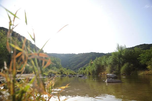 LA BOHEME Camping Hôtel - Photo 9