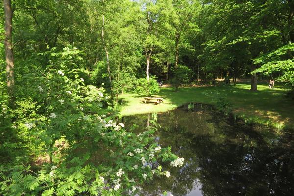 Natuurkampeerterrein Mariahoeve - Photo 3