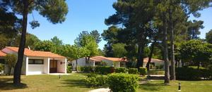 Residence Punta Spin - Photo 5
