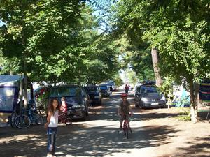 Camping Paradis Les Pins d'Oléron - Photo 4