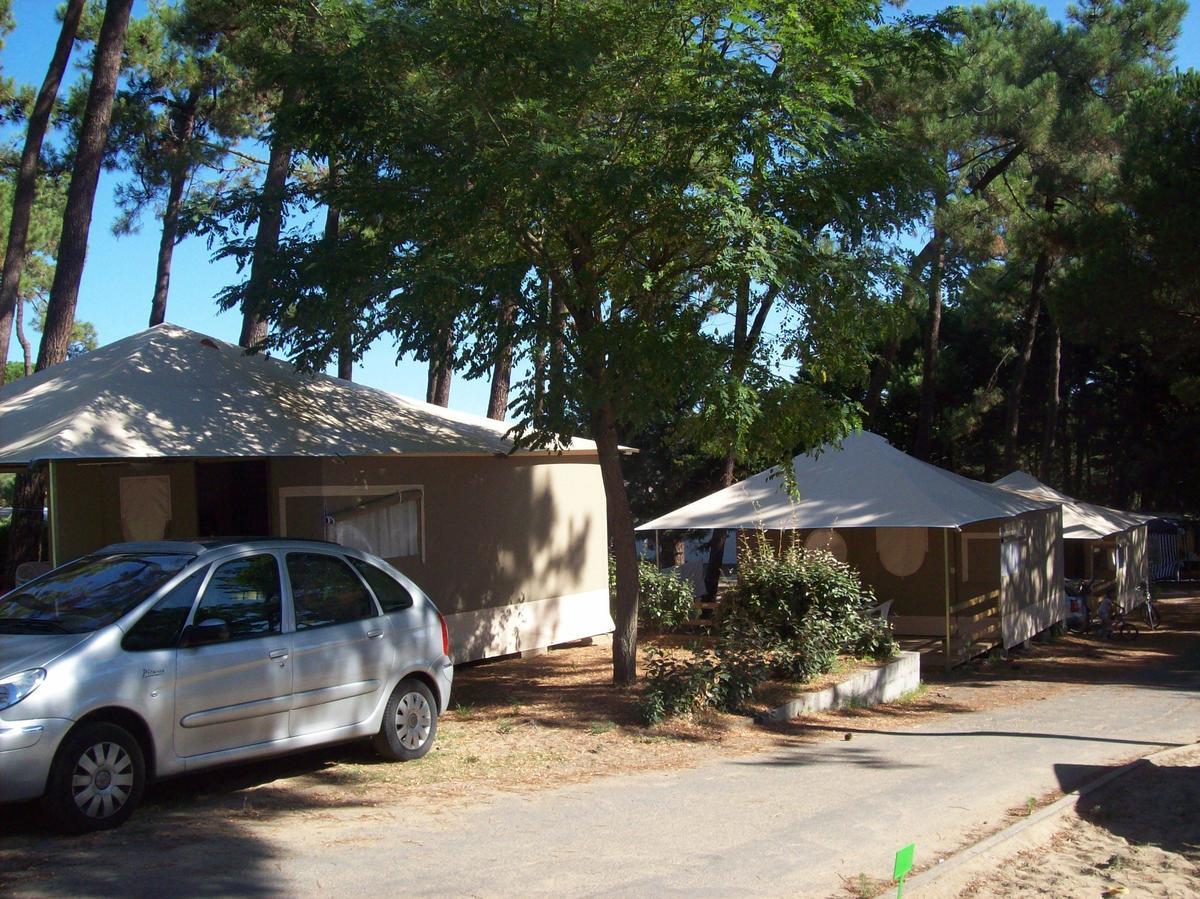 Camping Paradis Les Pins d'Oléron - Photo 2