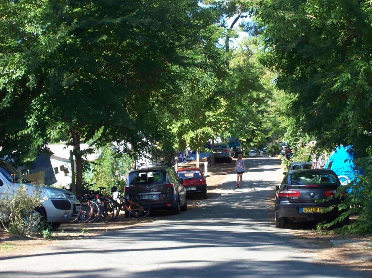 Camping Paradis Les Pins d'Oléron - Photo 7