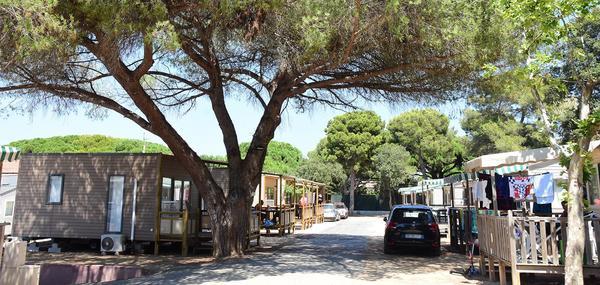 Camping Le Méditerranée - Photo 2