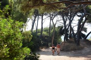 Camping Le Méditerranée - Photo 12