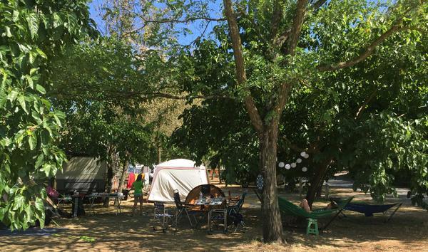 Camping Le Mas des Chênes - Photo 7