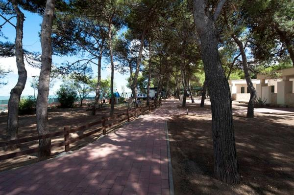 Camping Village Spiaggia Lunga - Photo 9