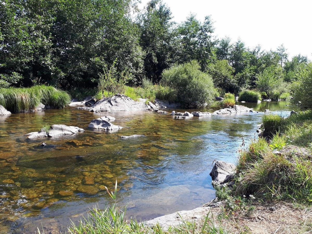 Camping La Cigale de L'Allier - Photo 7