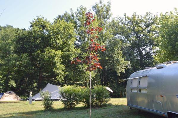 Camping la Prade - Photo 10