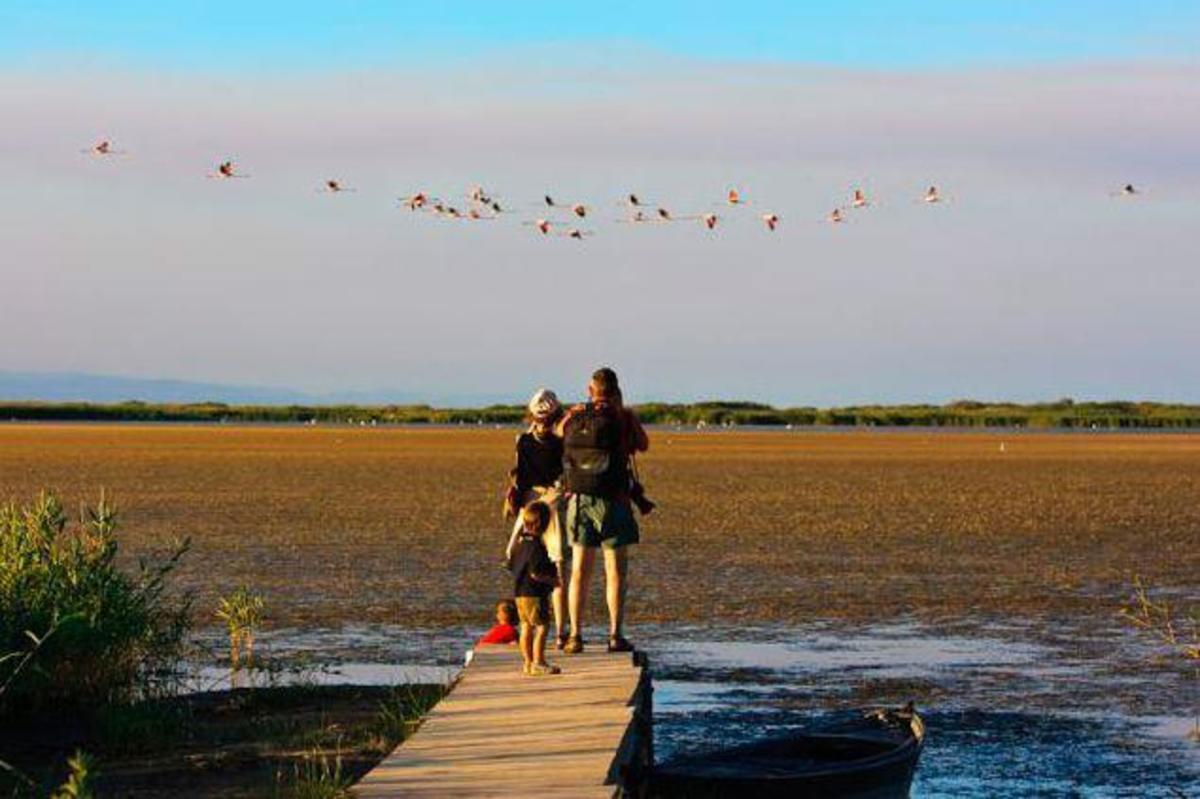 Camping Ampolla Playa - Photo 34