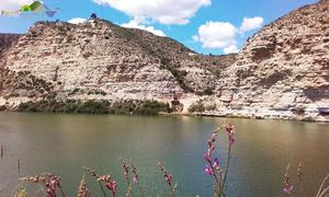 Camping Port Massaluca - Photo 105