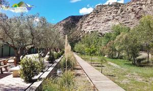Camping Port Massaluca - Photo 104