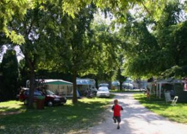 Camping Terme Ptuj - Photo 1106