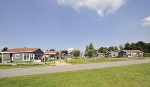 RCN Vakantiepark de Schotsman - Photo 50