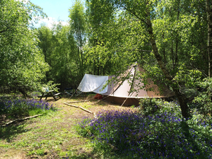 Beech Estate Campsite - Photo 12