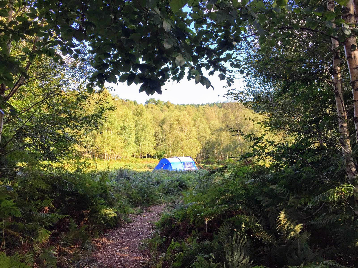 Beech Estate Campsite - Photo 16