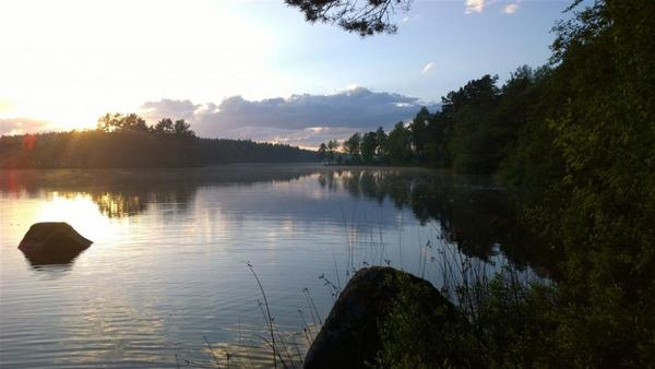 Långasjönäs Camping & Holiday Village - Photo 5