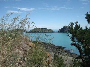 Huttopia Baie du Mont St Michel - Photo 1307